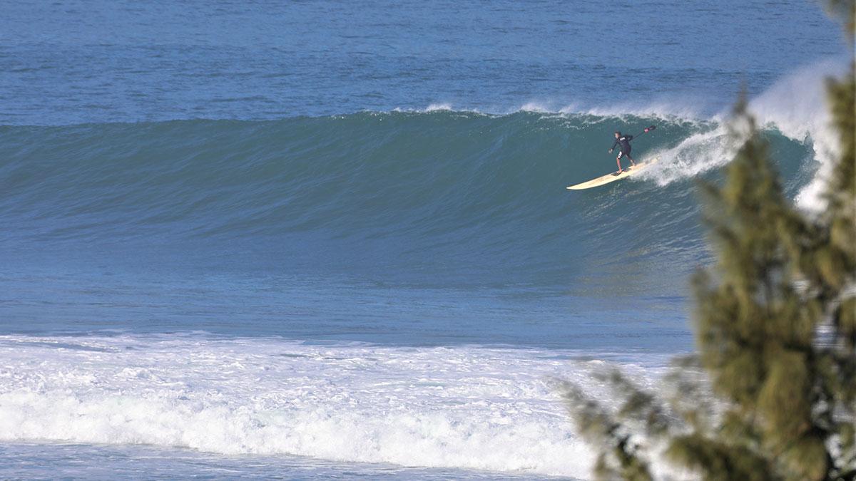 Surf Till 100